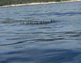 tailored-boat-tour-split-trogir-250