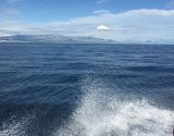 tailored-boat-tour-split-trogir-305